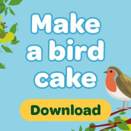 Download button with words make a bird cake