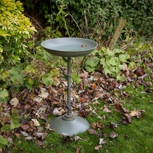 Peckish Secret Garden Bird Bath in situ