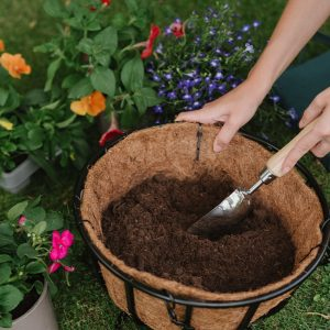 westland container and basket planting mix