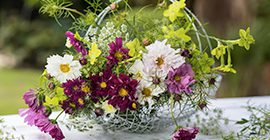 Top Tips For Flower Cutting