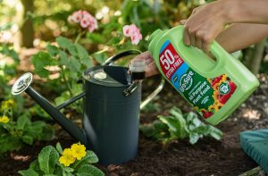 Plant food for Pots and containers