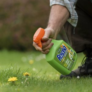 Resolva Lawn WeedKiller Extra Ready To Use in use