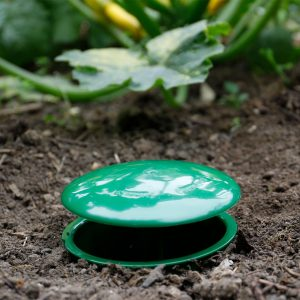 Growing Success Slug & Snail Trap in soil