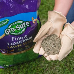 gro sure fine & lux lawn seed 100m2 bag