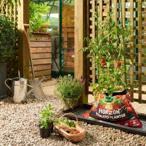 new horizon tomato planter on grow it growbag tray