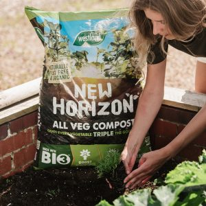 new horizon all veg compost veg being planted