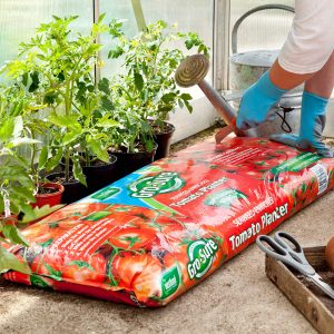 Gro-Sure Tomato Planter