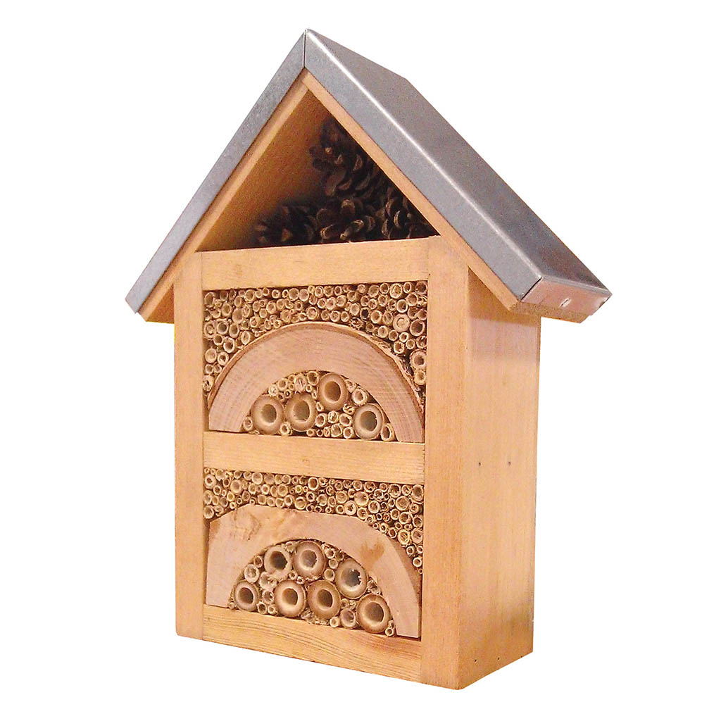 Nature's Haven Woodland Insect Box