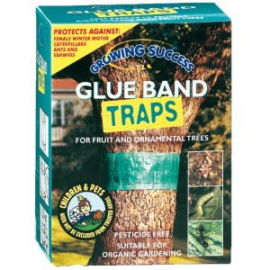 Growing Success Glue Band Traps