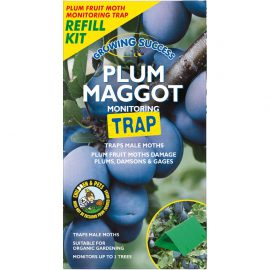 Growing Success Plum Maggot Trap Refill