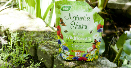 Natures Haven Easy Wildflowers lifestyle