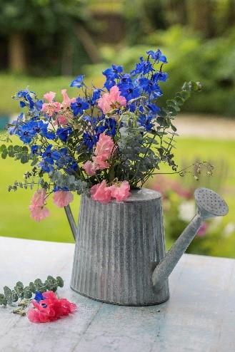 flowers planted in watering can