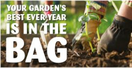 Look forward to a 'vintage' year in your garden!