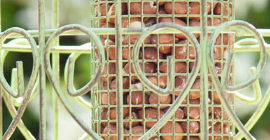Choosing and caring for your bird feeders and tables