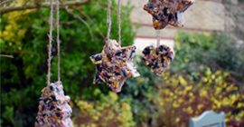 How to make your own Festive Bird Feeders