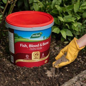 fish, blood and bone 10kg in soil