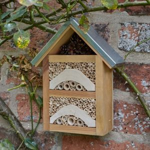 Garden Insect House on wall