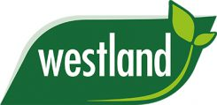 Westland Houseplant Feed & Compost
