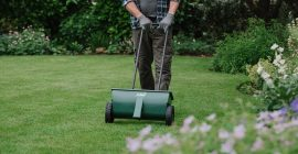 Lawn Spreader Settings