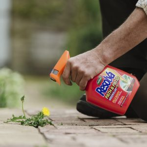 Resolva path & patio 1 litre ready to use in use