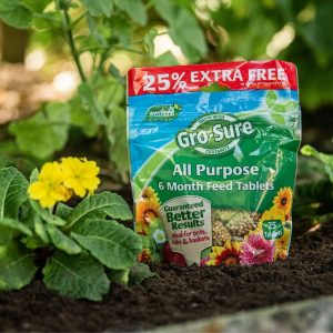 Gro-Sure All-Purpose Slow Release Plant Food Tablets