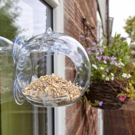 Peckish Globe Window Feeder