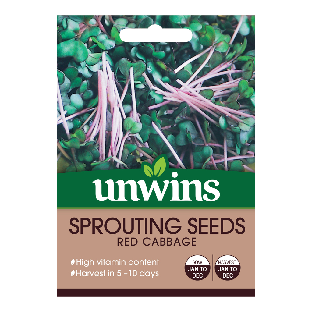 Unwins Sprouting Seeds Red Cabbage