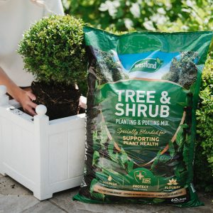 westland tree and shrub compost in use