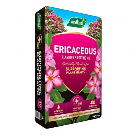 Westland Ericaceous Planting & Potting Mix