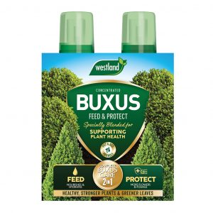 Buxus feed and protect front view