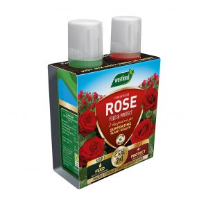 2 in 1 feed and protect rose