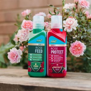Rose 2 in 1 Feed & Protect out of pack