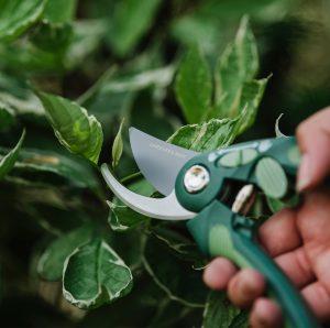 Gardener's Mate Bypass Secateurs close up