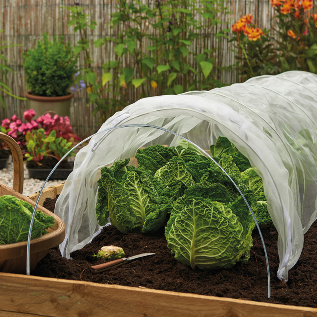 grow tunnel hoops in use