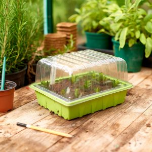 half seed tray with seedlings and lid