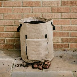 potato planter bag in use