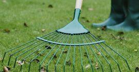 March Gardening Jobs