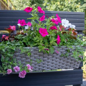 Multi Placement Mountain Grass Effect Planter