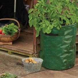 potato planter bags in use
