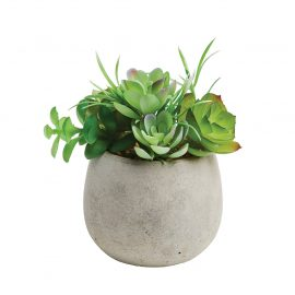 Artificial Succulent Pot Plant Medium