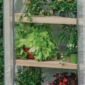 premium 4 tier wooden growhouse shelves