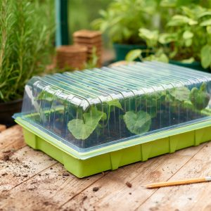 seed tray lid