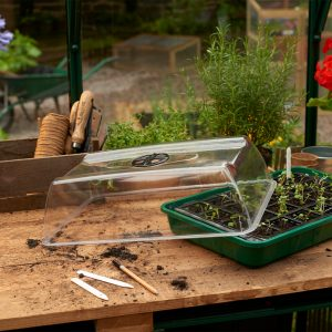 unheated propagator without lid growing