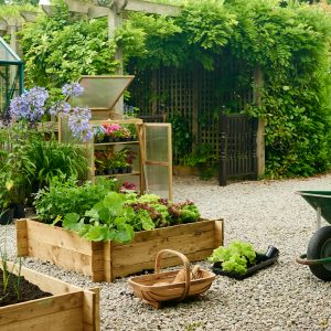 wooden raised bed in use