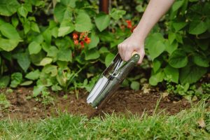 bulb planting gardening jobs article
