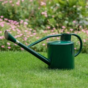 9L Long Reach Watering Can
