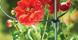 coupler and stake with flower