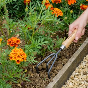 Carbon Steel Hand 3 Prong Cultivator in soil