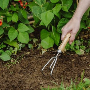 garden life stainless steel 3 prong hand cultivator in soil