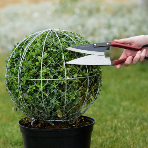 Kent & Stowe small topiary shears in use